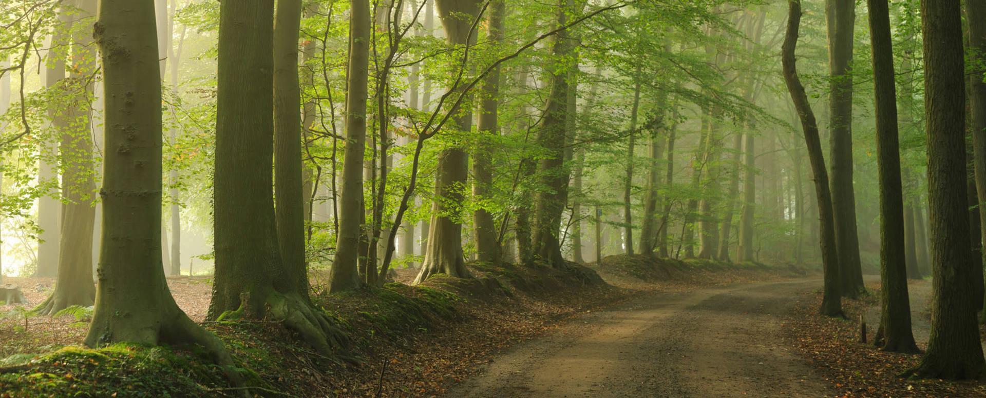 Drenthe is de juiste provincie voor jou motortoertochten